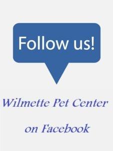 contact us FB